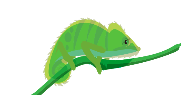 Image: Adaptability skills - chameleon