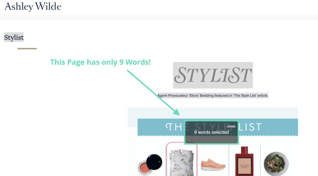 Press Stylist Magazine Page