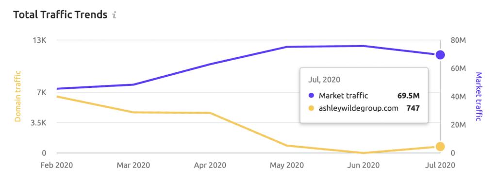 Ashley Wild Website Analysis Traffic Drop 2020
