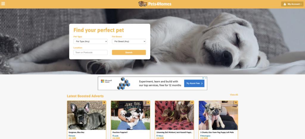 Pets4Homes Website screenshot