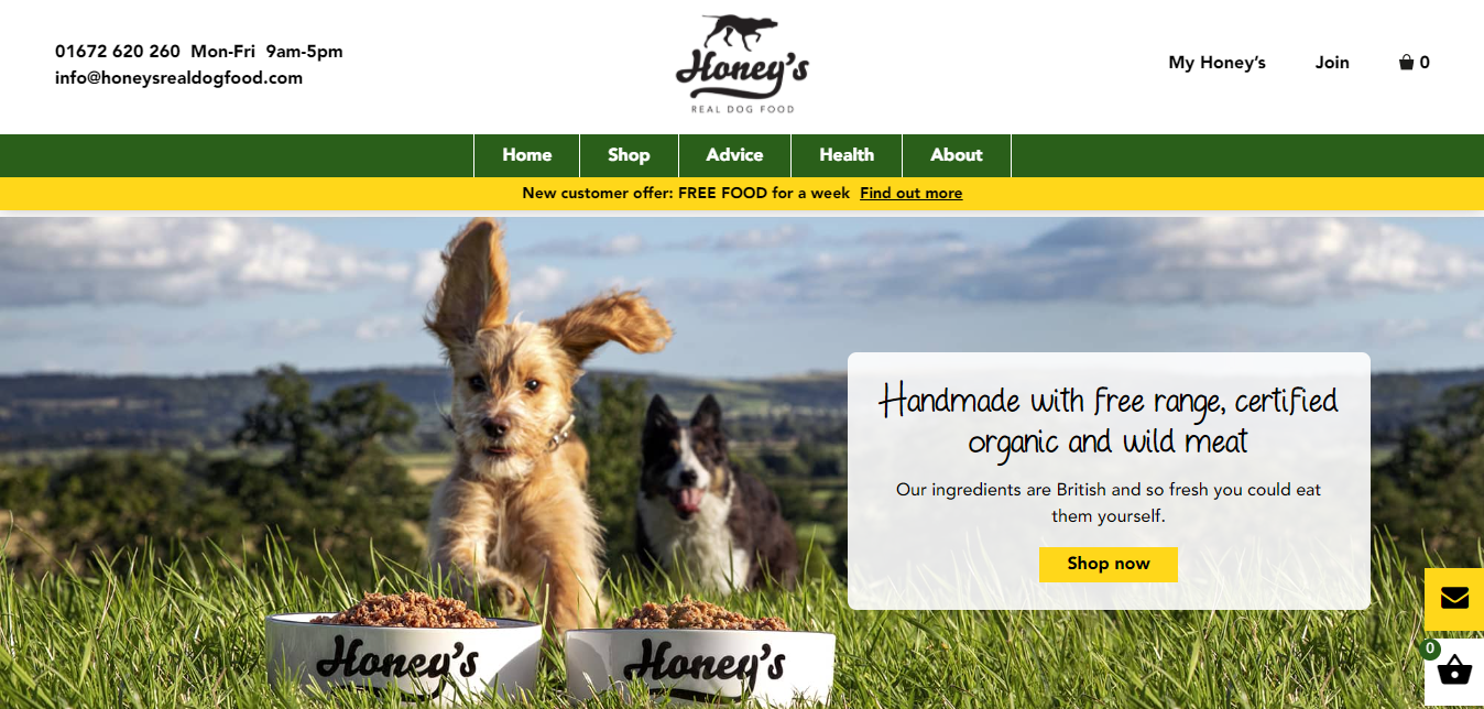 Honey's Real Dog Food Homepage Good content example